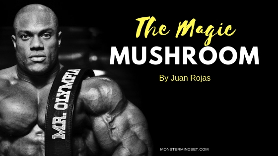 magic mushroom, monster mindset